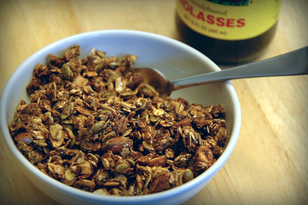 homemade-granola_4976946537_o