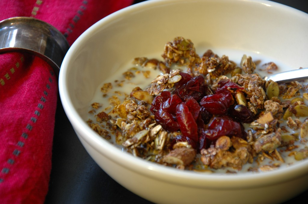homemade-granola_4977558474_o