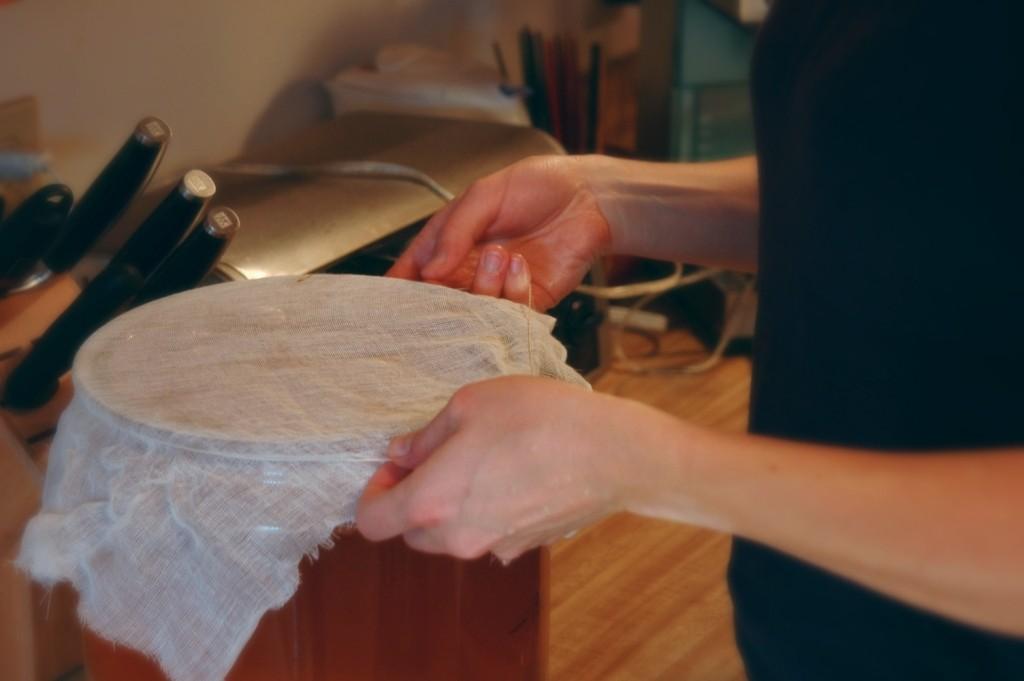 securing-the-cloth_2383851720_o