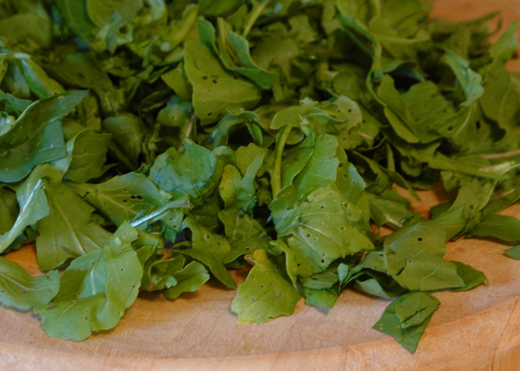 arugula-pizza_2766987758_o