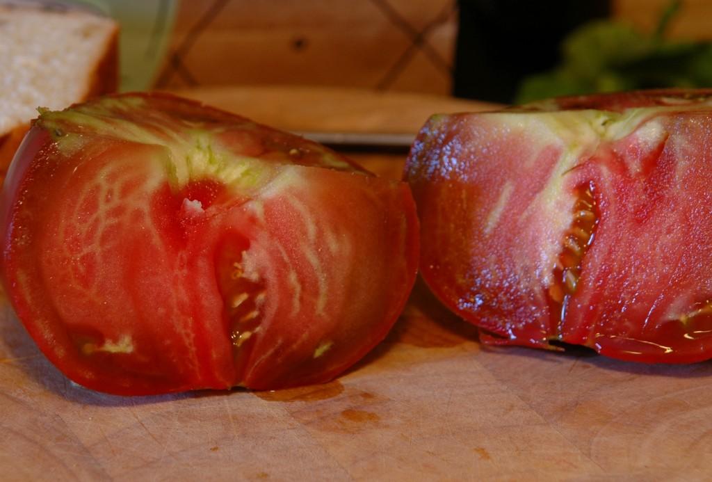 toasted-tomato-sandwich_2796520044_o