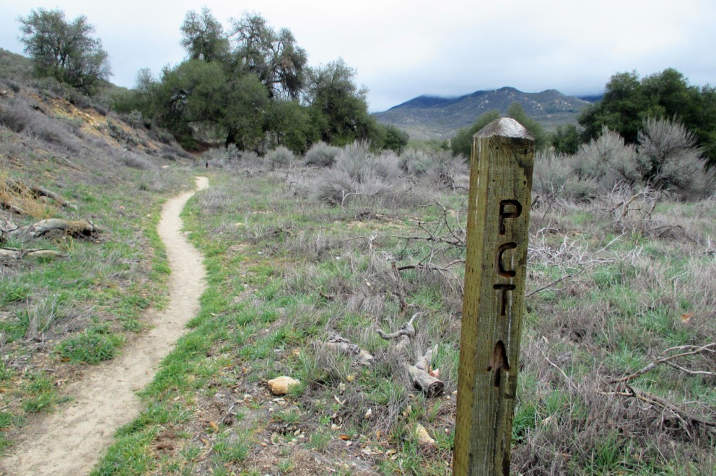 I finally got to hike on the Pacific Crest Trail!